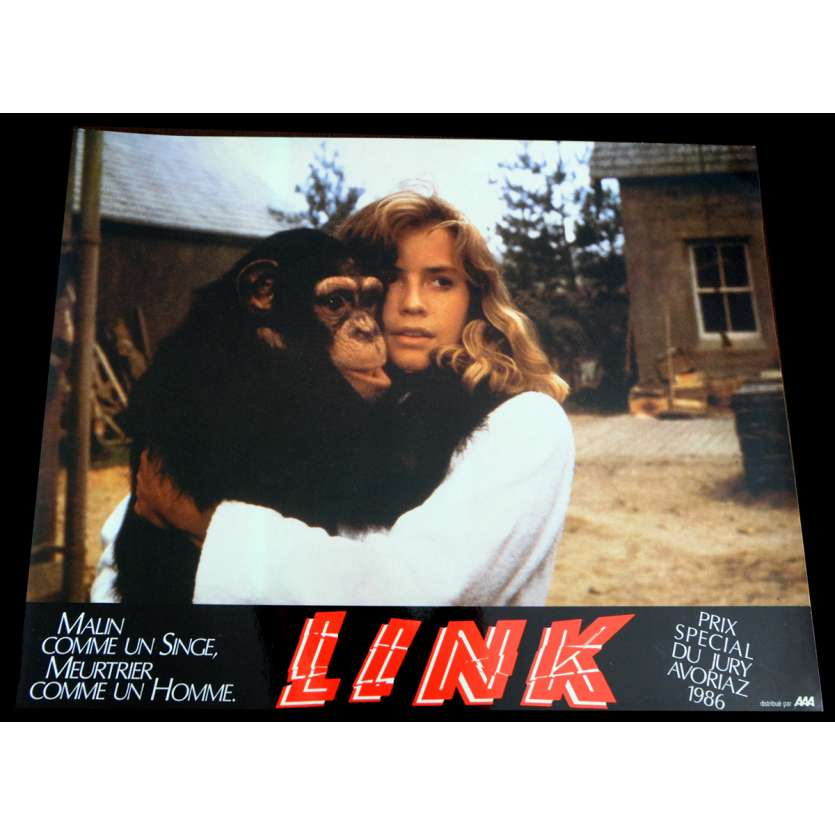LINK French Lobby Card 2 9x12 - 1986 - Richard Franklin, Terence Stamp