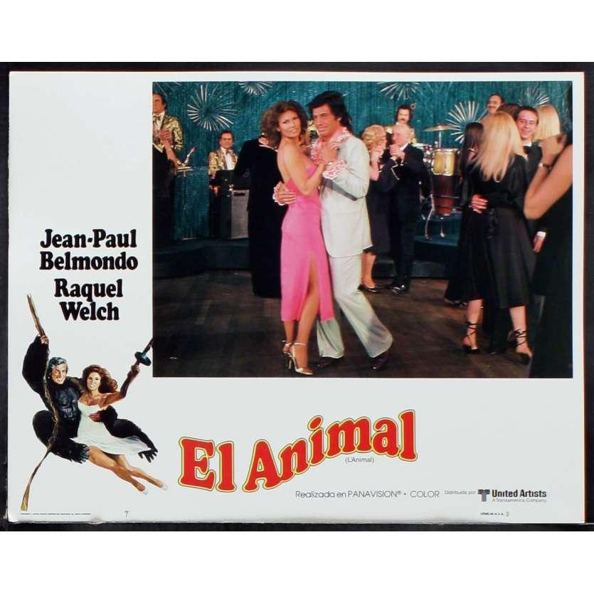 ANIMAL US Lobby Card 2 11x14 - 1977 - Claude Zidi, Jean-Paul Belmondo