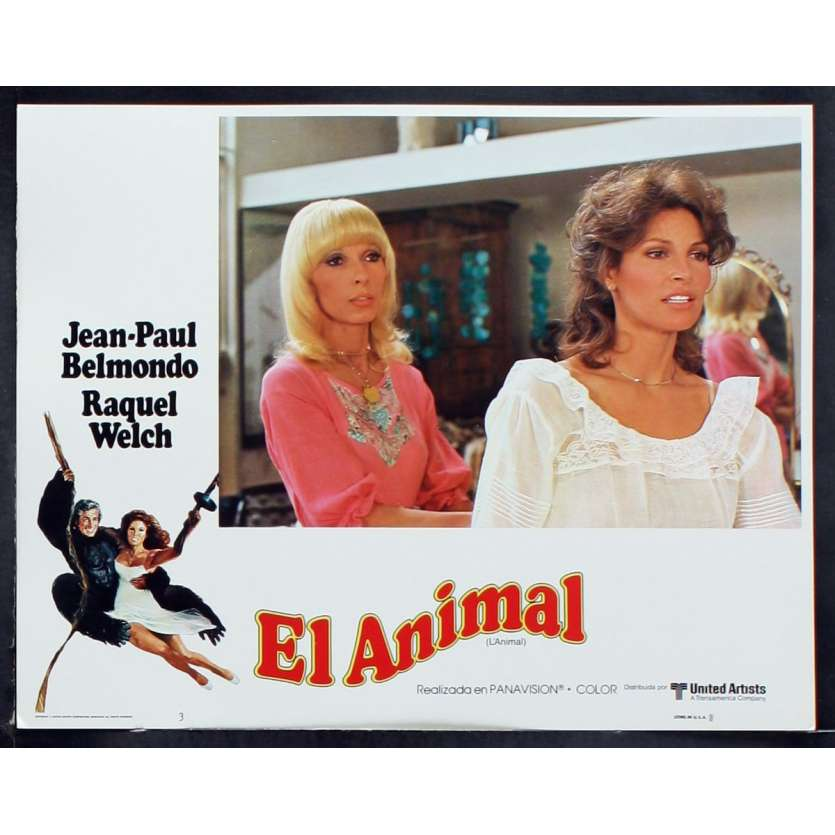ANIMAL US Lobby Card 6 11x14 - 1977 - Claude Zidi, Jean-Paul Belmondo