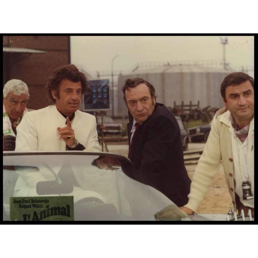 THE ANIMAL French DeLuxe Lobby Card N10 10x12 - 1977 - Claude Zidi, Jean-Paul Belmondo