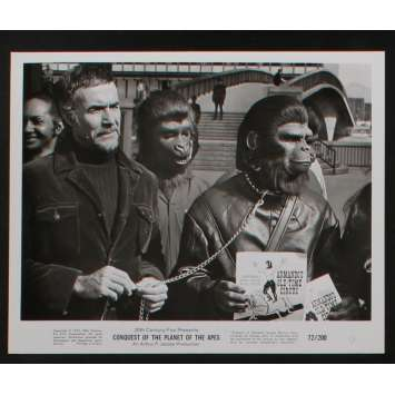 LA CONQUETE DE LA PLANETE DES SINGES Photo de presse N1 20x25 - 1972 - Roddy McDowall, J. Lee Thomson