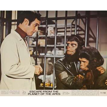 ESCAPE FROM THE PLANET OF THE APES Lobby Card N6 8x10 in. USA - 1971 - Don Taylor, Roddy McDowall
