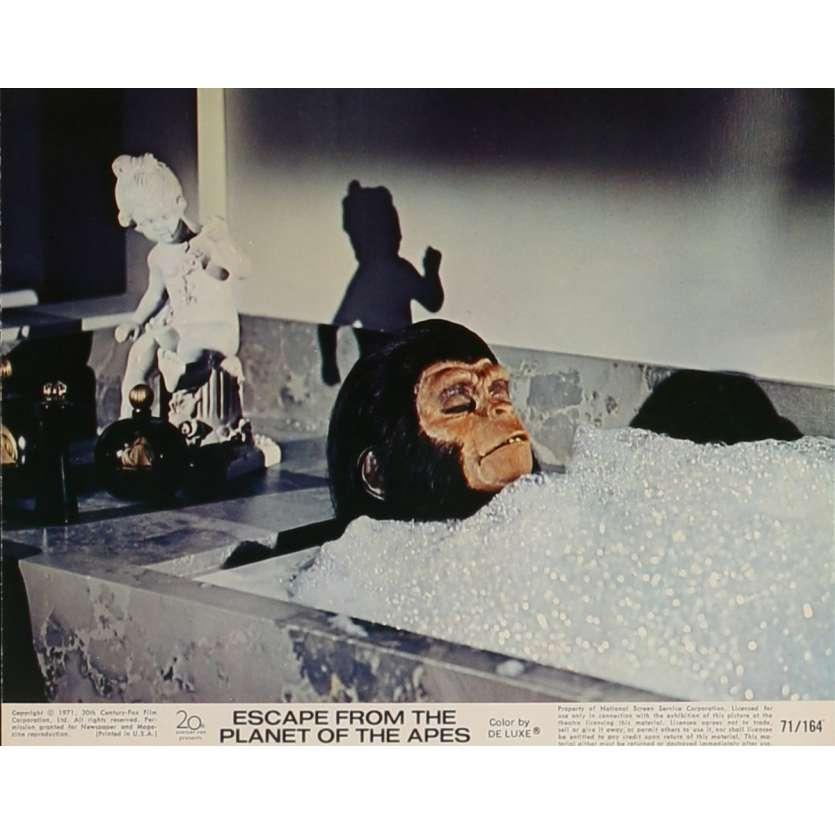 LES EVADES DE LA PLANETE DES SINGES Photo de film N5 20x25 cm - 1971 - Roddy McDowall, Don Taylor