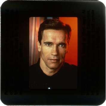 TOTAL RECALL Slides x6 USA '90, Schwarzenegger, Verhoeven, Stone