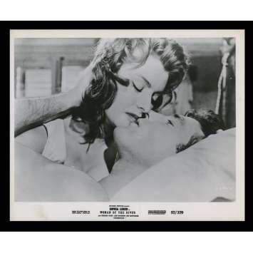 LA FILLE DU FLEUVE Photo de presse 3 20x25 - 1954 - Sophia Loren, Mario Soldati