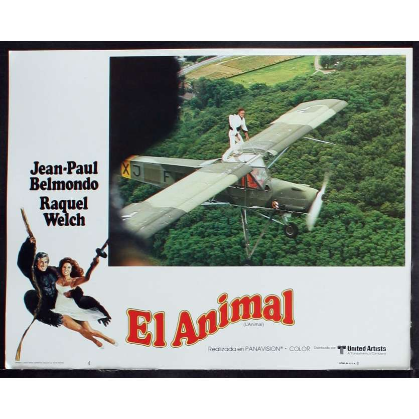 ANIMAL US Lobby Card 1 11x14 - 1977 - Claude Zidi, Jean-Paul Belmondo