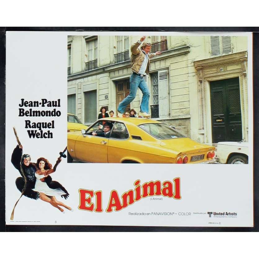 ANIMAL US Lobby Card 4 11x14 - 1977 - Claude Zidi, Jean-Paul Belmondo