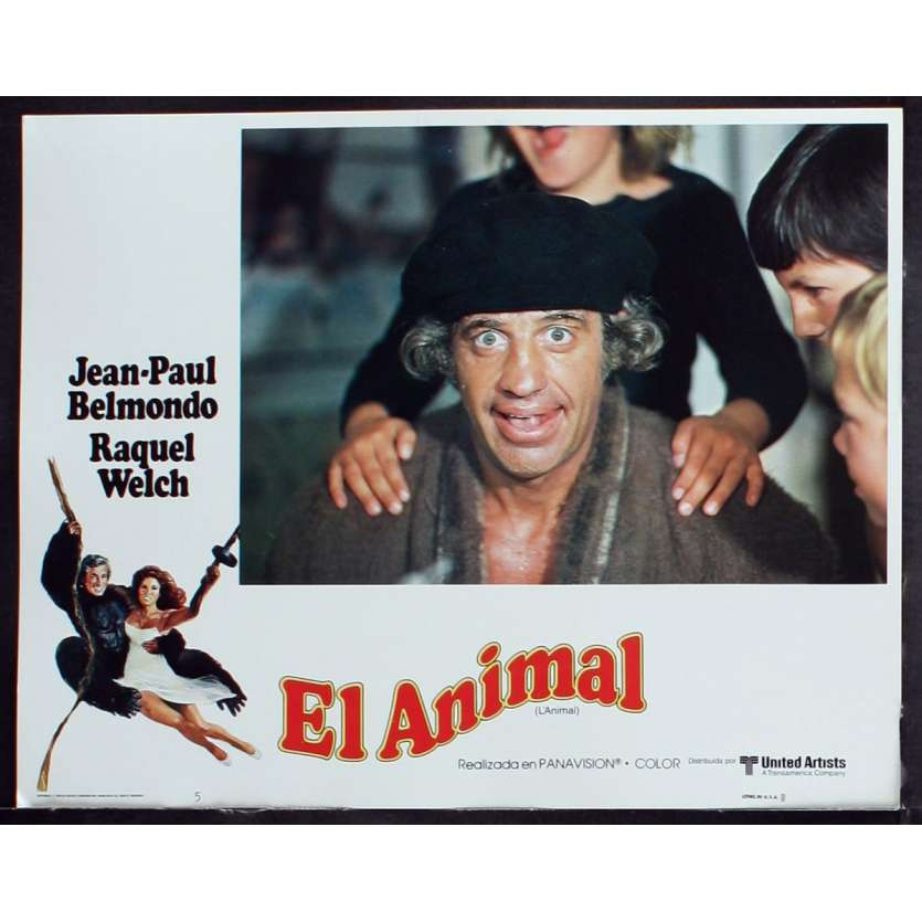 ANIMAL US Lobby Card 5 11x14 - 1977 - Claude Zidi, Jean-Paul Belmondo