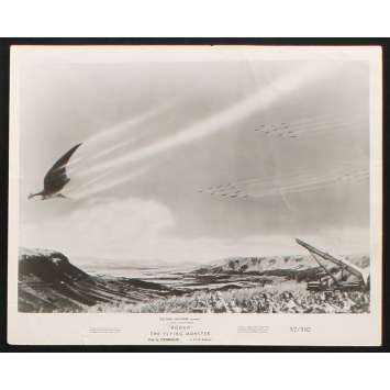 RODAN Photo de presse 2 20x25 - 1957 - Kenji Sahara, Ishirô Honda
