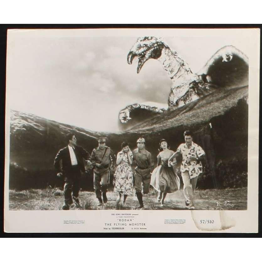RODAN Photo de presse 1 20x25 - 1957 - Kenji Sahara, Ishirô Honda