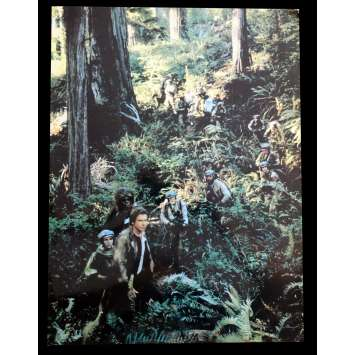 STAR WARS - LE RETOUR DU JEDI Photo Prestige N6 41x31 - 1983 - Harrison Ford, Richard Marquand