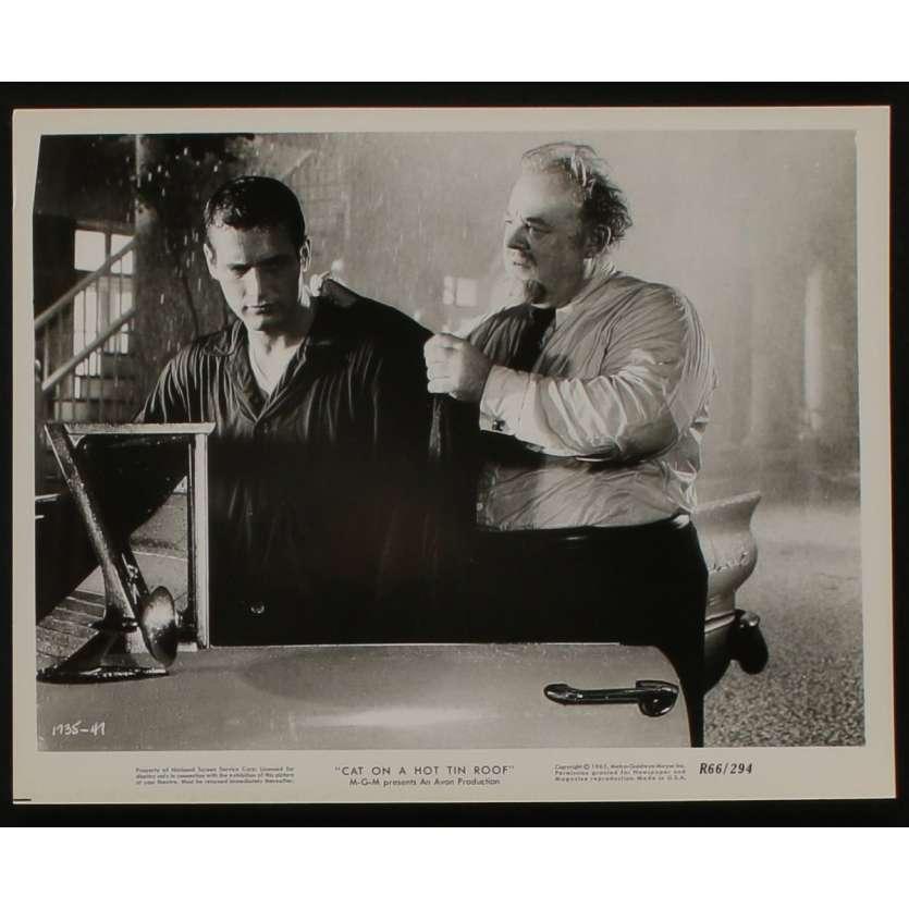 LA CHATTE SUR LE TOIT BRULANT Photo de presse N4 20x25 - 1966 - Paul Newman, Liz Taylor, Richard Brooks