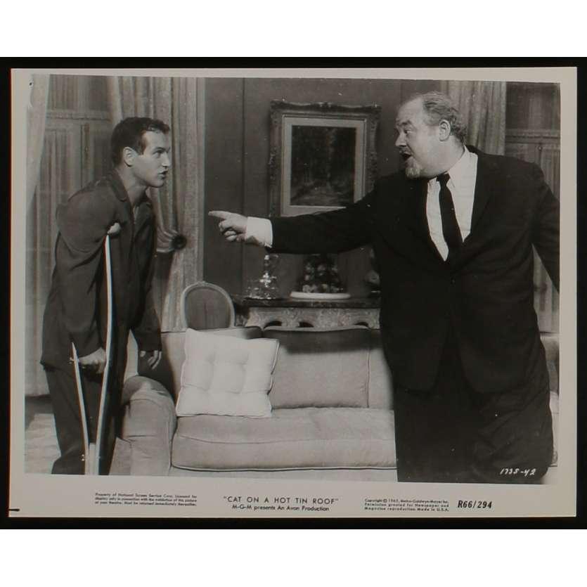 LA CHATTE SUR LE TOIT BRULANT Photo de presse N5 20x25 - 1966 - Paul Newman, Liz Taylor, Richard Brooks