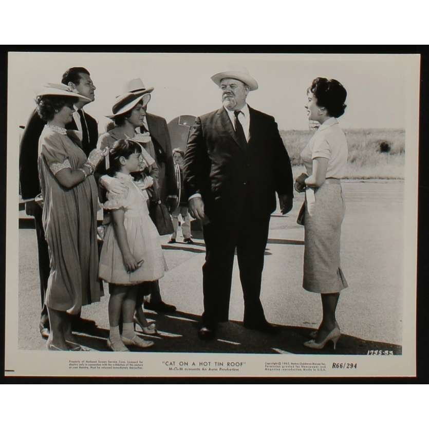 LA CHATTE SUR LE TOIT BRULANT Photo de presse N8 20x25 - 1966 - Paul Newman, Liz Taylor, Richard Brooks