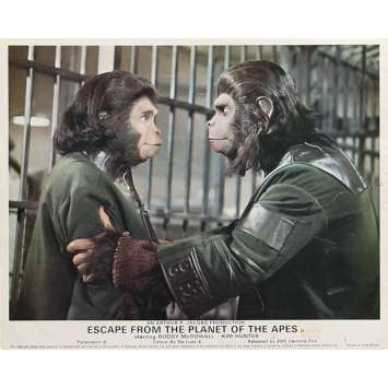 ESCAPE FROM THE PLANET OF THE APES Lobby Card 8x10 in. - N03 1971 - Don Taylor, Roddy McDowall