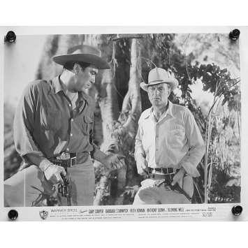 LE SOUFFLE SAUVAGE Photo de presse 20x25 cm - N03 1953 - Gary Cooper, Hugo Fregonese