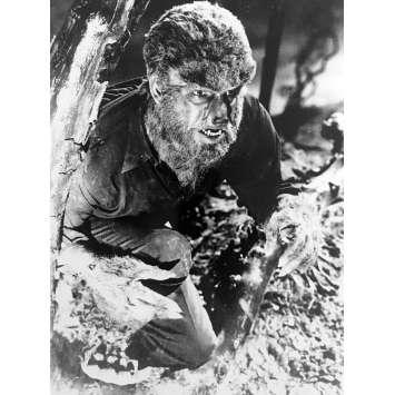 LA NUIT DU LOUP-GAROU Photo de presse - 18x24 cm. - R1980 - Oliver Reed, Terence Fisher