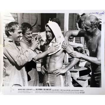 COOL HAND LUKE Movie Still N18 - 8x10 in. - 1967 - Stuart Rosenberg, Paul Newman