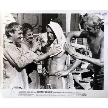 LUKE LA MAIN FROIDE Photo de presse N18 - 20x25 cm. - 1967 - Paul Newman, Stuart Rosenberg