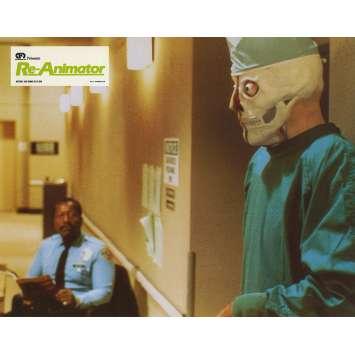 RE-ANIMATOR Photo de film N07 - 21x30 cm. - 1985 - Jeffrey Combs, Stuart Gordon