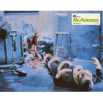 RE-ANIMATOR Lobby Card N06 - 9x12 in. - 1985 - Stuart Gordon, Jeffrey Combs