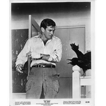 THE BIRDS Movie Still N03 - 8x10 in. - 1963 - Alfred Hitchcock, Tippi Hedren