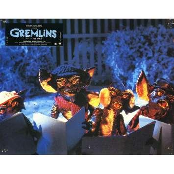 GREMLINS Photo de film N03 - 21x30 cm. - 1984 - Zach Galligan, Joe Dante