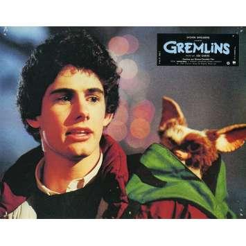 GREMLINS Photo de film N05 - 21x30 cm. - 1984 - Zach Galligan, Joe Dante