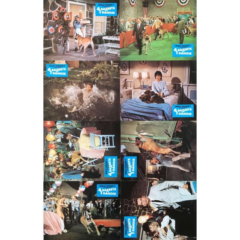 4 BASSET POUR UN DANOIS Photos de film x8 - jeu B - 21x30 cm. - 1966 - Dean Jones, Walt Disney