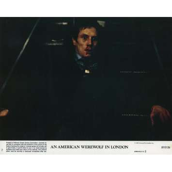 LE LOUP-GAROU DE LONDRES Photo de film N02 - 20x25 cm. - 1981 - David Naughton, John Landis