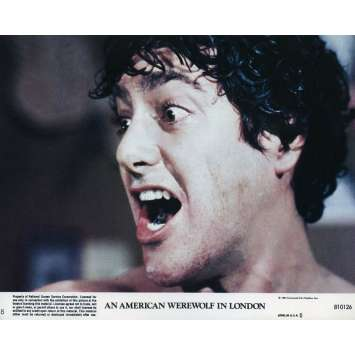 LE LOUP-GAROU DE LONDRES Photo de film N01 - 20x25 cm. - 1981 - David Naughton, John Landis
