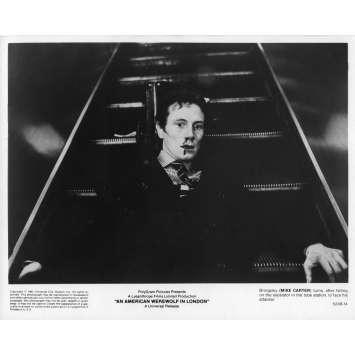 LE LOUP-GAROU DE LONDRES Photo de presse N03 - 20x25 cm. - 1981 - David Naughton, John Landis