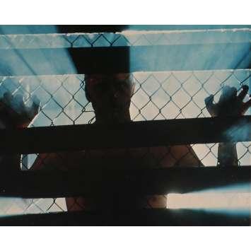 BLADE RUNNER Photo de film N07 - DeLuxe - 20x25 cm. - 1982 - Harrison Ford, Ridley Scott