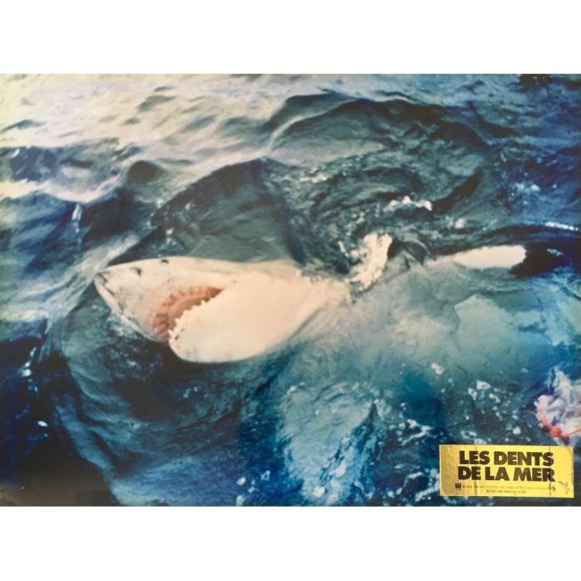 JAWS Original Lobby Card N06 - 12x15 in. - 1975 - Steven Spielberg, Roy Sheider