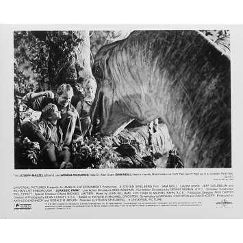 JURASSIC PARK Photo de film N3 20x25 - 1993 - Sam Neil, Steven Spielberg