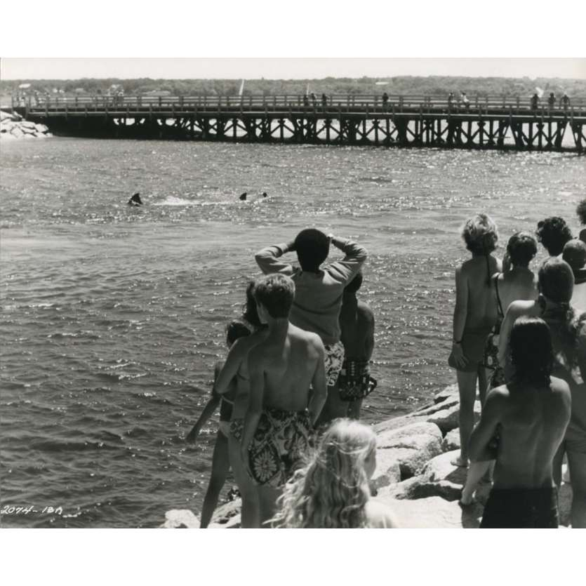 LES DENTS DE LA MER Photo de presse N06 - 20x25 cm. - 1975 - Roy Sheider, Steven Spielberg