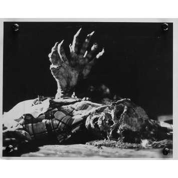 EVIL DEAD Photo de presse N03 - 20x25 cm. - 1981 - Bruce Campbell, Sam Raimi