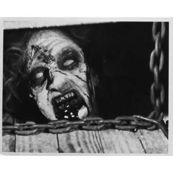 THE EVIL DEAD Original Movie Still N01 - 8x10 in. - 1981 - Sam Raimi, Bruce Campbell