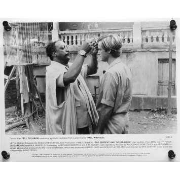 L'EMPRISE DES TENEBRES Photo de presse N06 - 20x25 cm. - 1988 - Bill Pullman, Wes Craven