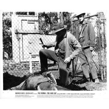 COOL HAND LUKE Original Movie Still N20 - 8x10 in. - 1967 - Stuart Rosenberg, Paul Newman