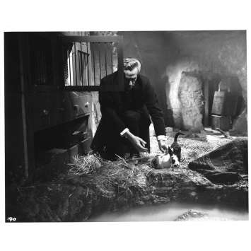 LA FEMME REPTILE Photo de presse 190 - 20x25 cm. - 1966 - Noel Willman, John Gilling