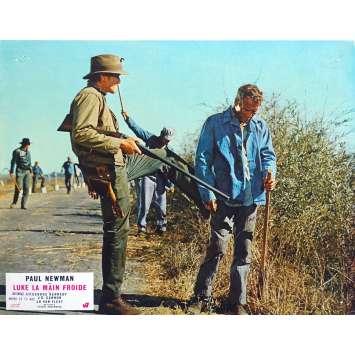 LUKE LA MAIN FROIDE Photo de film N02 - 21x30 cm. - 1967 - Paul Newman, Stuart Rosenberg
