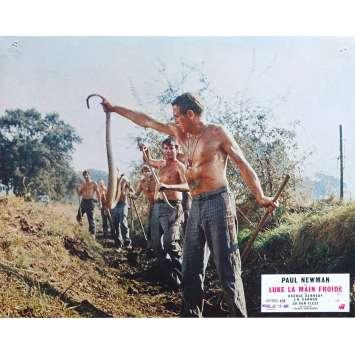 LUKE LA MAIN FROIDE Photo de film N01 - 21x30 cm. - 1967 - Paul Newman, Stuart Rosenberg