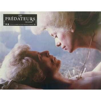 LES PREDATEURS Photo de film N06 - 21x30 cm. - 1983 - David Bowie, Tony Scott