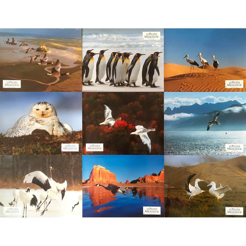 WINGED MIGRATION Original Lobby Cards - 9x12 in. - 2001 - Jacques Perrin, Philippe Labro