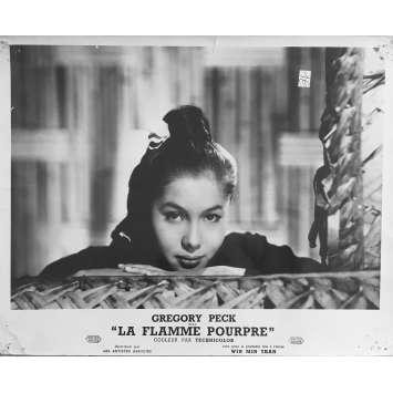 THE PURPLE PAIN Original Lobby Card - 10x12 in. - 1954 - Robert Parrish, Greagory Peck