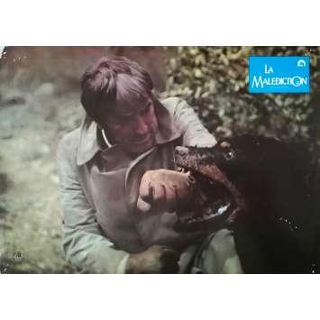 LA MALEDICTION Photo de film - 21x30 cm. - 1979 - Gregory Peck, Richard Donner