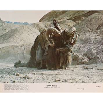 STAR WARS - LA GUERRE DES ETOILES Photo de film N8 - 20x25 cm. - 1977 - Harrison Ford, George Lucas
