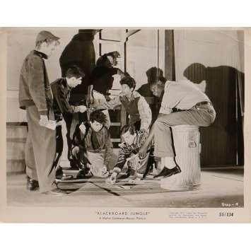 GRAINE DE VIOLENCE Photo de presse 1666-18 - 20x25 cm. - 1955 - Glenn Ford, Richard Brooks