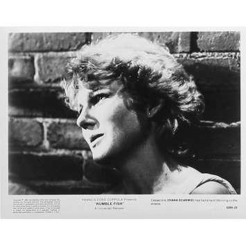 RUSTY JAMES Photo de presse 5295-25 - 20x25 cm. - 1983 - Matt Dillon, Francis Ford Coppola
